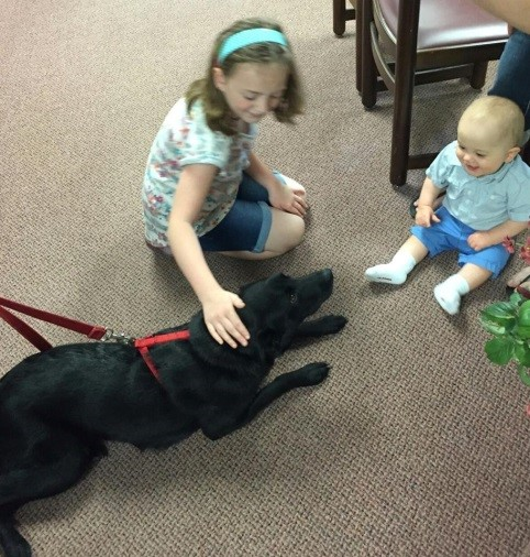 Orthodontic, Finger Lakes, comfort dog